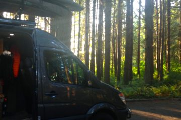 VANdal - Bellingham Washington Forest